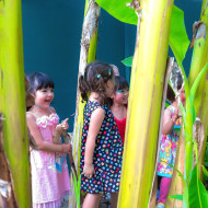 Kids Fun Birthday Party at The Gardens